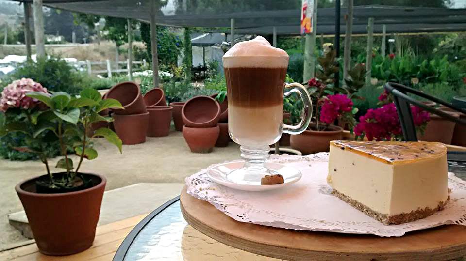 Café Emilia Maitencillo