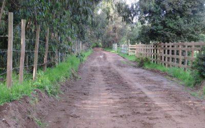 Camino los médanos
